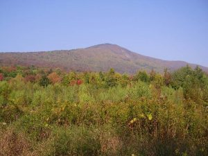 Autumn view of Mt. Greylock, from the east.